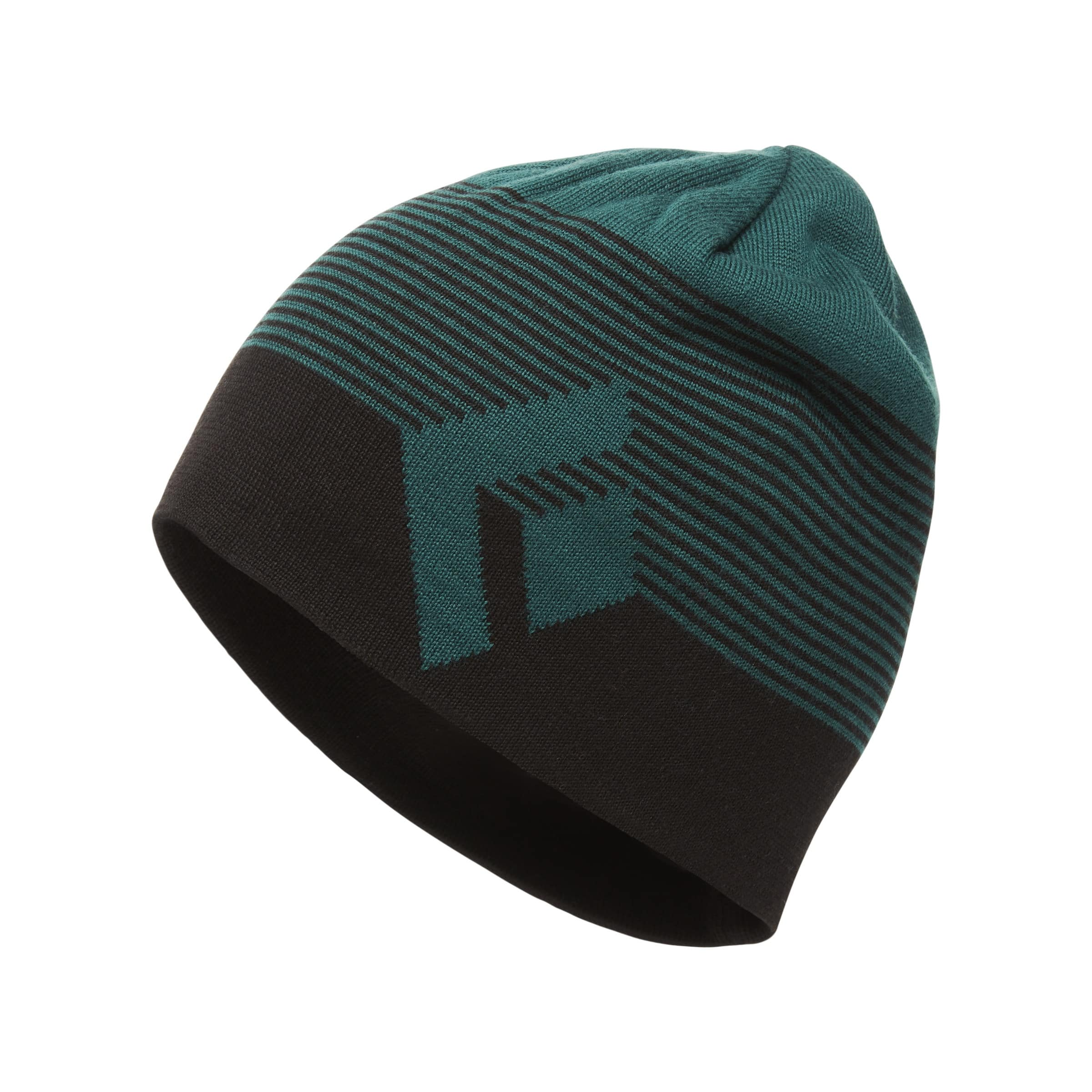 443ed6bacac Buy Black Diamond Walter Beanie from Outnorth